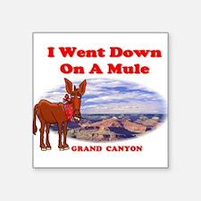 "Grand Canyon Mule Square Sticker 3"" x 3"""