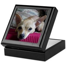 Dapper Dog Keepsake Box