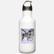 Wolves Playing Water Bottle
