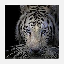 White Tiger Stalking Tile Coaster