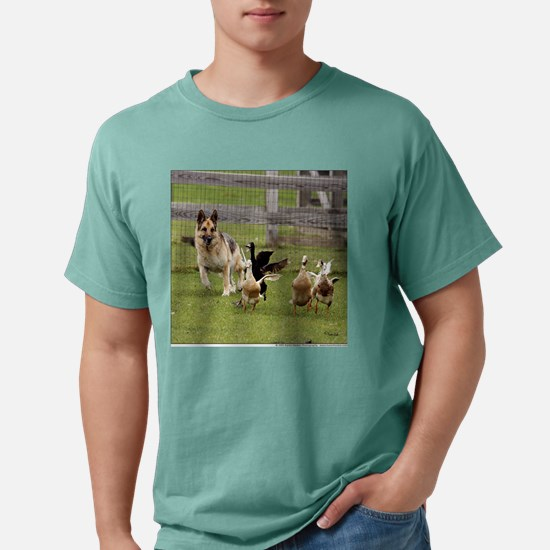 hd_052205c_020_tshirtFro Mens Comfort Colors Shirt