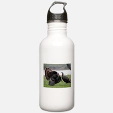 The Meeting Water Bottle