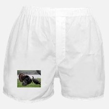 The Meeting Boxer Shorts