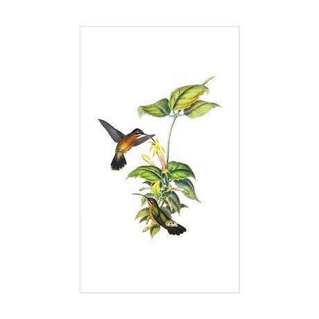 Hummingbirds Sticker (Rectangle 10 pk)
