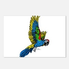 Flying Macaw Parrot Postcards (Package of 8)