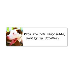 """Pets are not Disposable"" Car Magnet"