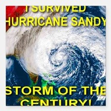I Survived Hurricane Sandy Storm of the Century Sq