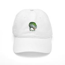 "Quaker Parrot ""What?"" Baseball Cap"