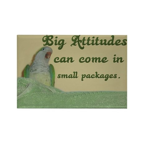 Quaker Parrot Attitude Rectangle Magnet (10 pack)