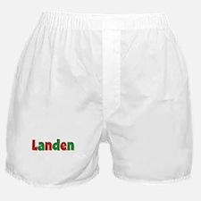 Landen Christmas Boxer Shorts