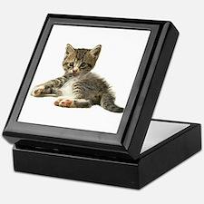 """Cute Tabby Kitten """"Meow"""" Keepsake Box"""