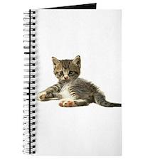 "Cute Tabby Kitten ""Meow"" Journal"