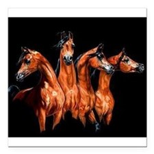 "Four Horses Square Car Magnet 3"" x 3"""