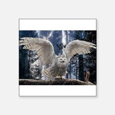 "Woody Snow Owl Square Sticker 3"" x 3"""
