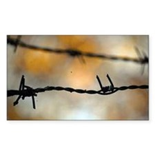 Barbed Wire Decal