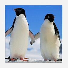 Cute Animals penguin Tile Coaster