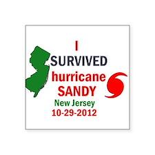 I SURVIVED HURRICANE SANDY NJ Sticker