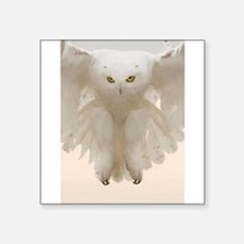 "Ghost Owl Square Sticker 3"" x 3"""