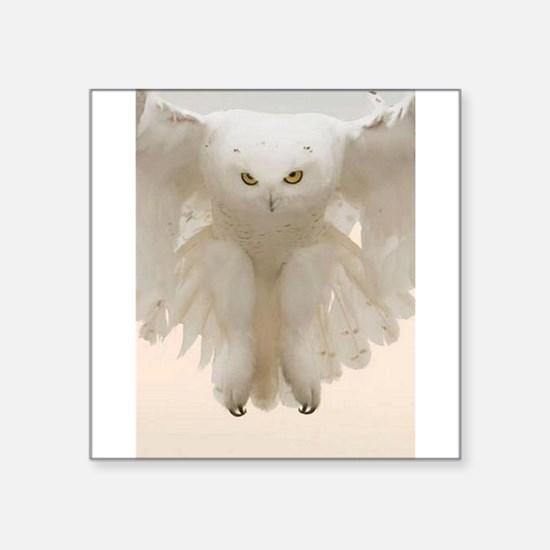 "Ghost Owl Square Sticker 3"" x 3"""