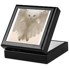 Ghost Owl Keepsake Box