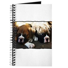Boxer puppies Journal