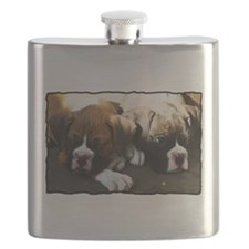 Boxer puppies Flask
