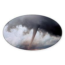 Tornado Fury Oval Decal