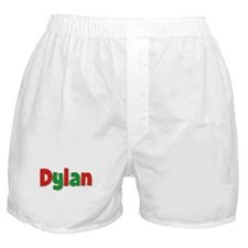 Dylan Christmas Boxer Shorts