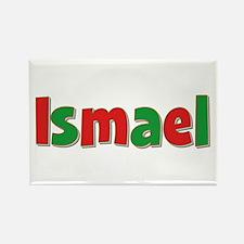 Ismael Christmas Rectangle Magnet