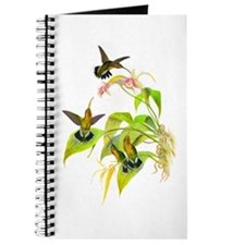 Hummingbirds Journal