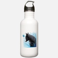 Steed Two Water Bottle