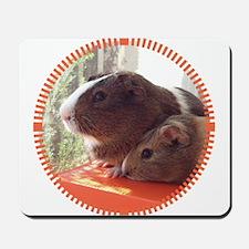 2 Guinea Pigs Mousepad