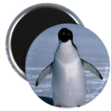 "Lone Adelie with background 2.25"" Magnet (10 pack)"