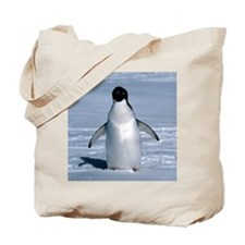 Lone Adelie with background Tote Bag
