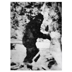 Bigfoot film, 1967 Framed Print