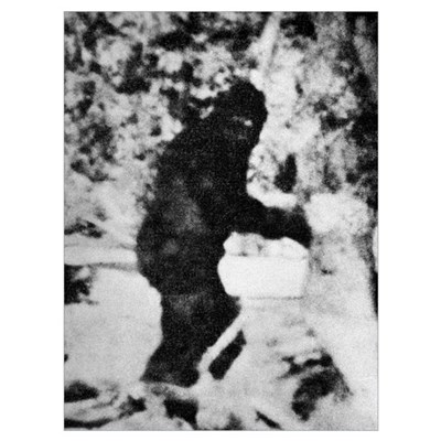 Bigfoot film, 1967 Poster