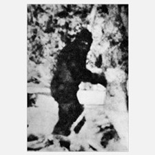 Bigfoot film, 1967