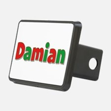 Damian Christmas Hitch Cover