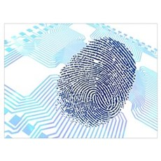 Biometric fingerprint scan, artwork Canvas Art