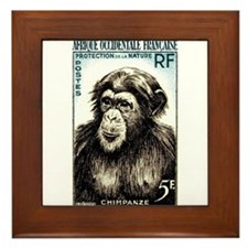 1955 French West Africa Chimp Postage Stamp Framed
