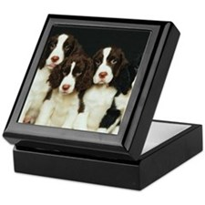 English Springer Spaniel Puppies (2) Keepsake Box