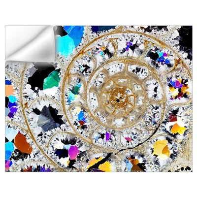 Ammonite fossil, thin section Wall Decal