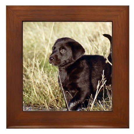 Black Lab Puppy Framed Tile