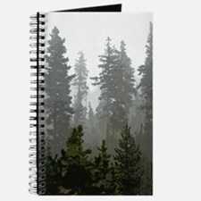 Misty pines Journal