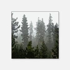 "Misty pines Square Sticker 3"" x 3"""