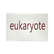 Eukaryote Rectangle Magnet