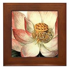 Botanical Lotus Flower Framed Tile