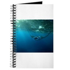 Manta Ray Swims in the water Journal