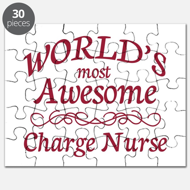 Awesome Charge Nurse Puzzle