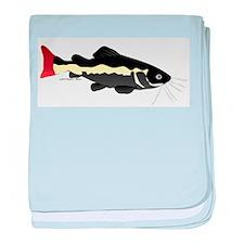 Redtailed Catfish (Audreys Amazon River) baby blan